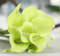 Artificial Flower Calla Lily ,Tender Green ,High quality Latex ,A bunch with 10 heads ,Free Shipping to worldwide area. Momda recommended trustworthy Supplier.