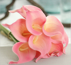 Artificial Flower Calla Lily ,Tender Pink ,High quality Latex ,A bunch with 10 heads ,Free Shipping to worldwide area. Momda recommended trustworthy Supplier.