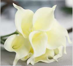 Artificial Flower Calla Lily ,Milk White ,High quality Latex ,A bunch with 10 heads ,Free Shipping to worldwide area. Momda recommended trustworthy Supplier.