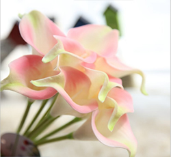 Artificial Flower Calla Lily ,Pink Green ,High quality Latex ,A bunch with 10 heads ,Free Shipping to worldwide area. Momda recommended trustworthy Supplier.