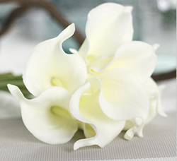 Artificial Flower Calla Lily ,Pure White ,High quality Latex ,A bunch with 10 heads ,Free Shipping to worldwide area. Momda recommended trustworthy Supplier.